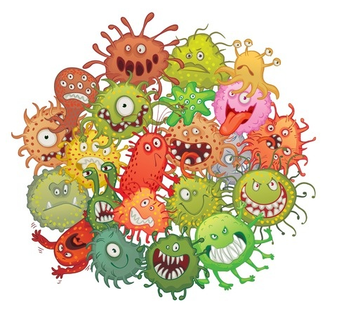 learn about germs